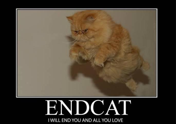 endcat_by_the_evil_kitten